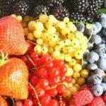 Small fruits varieties