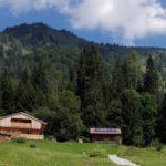 Hilde's Home